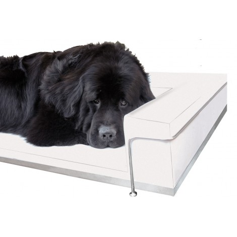 Dog & Cat ecoleather Sofa available in 13 different colors, frame made of steel chromed or lacquered