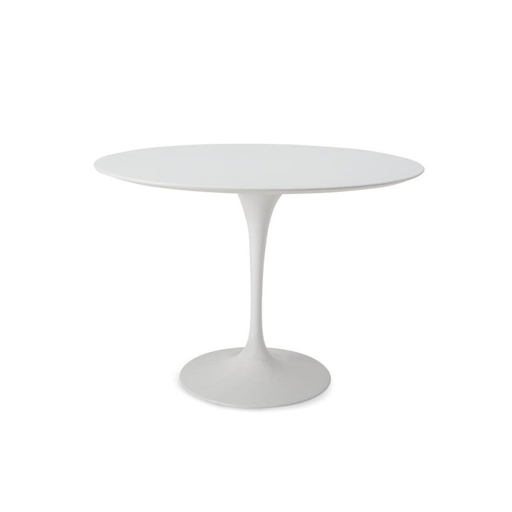 Oval Tulip Table with Round Base with
